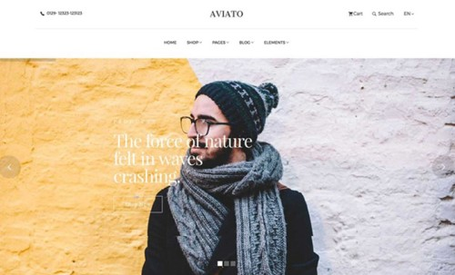 Aviato Elegant Ecommerce Website Template