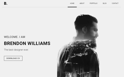 Brendon - Minimal Personal Portfolio Website Template