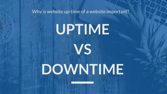 hosting speed test uptime downtime